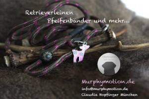 Murphymotion_Pom